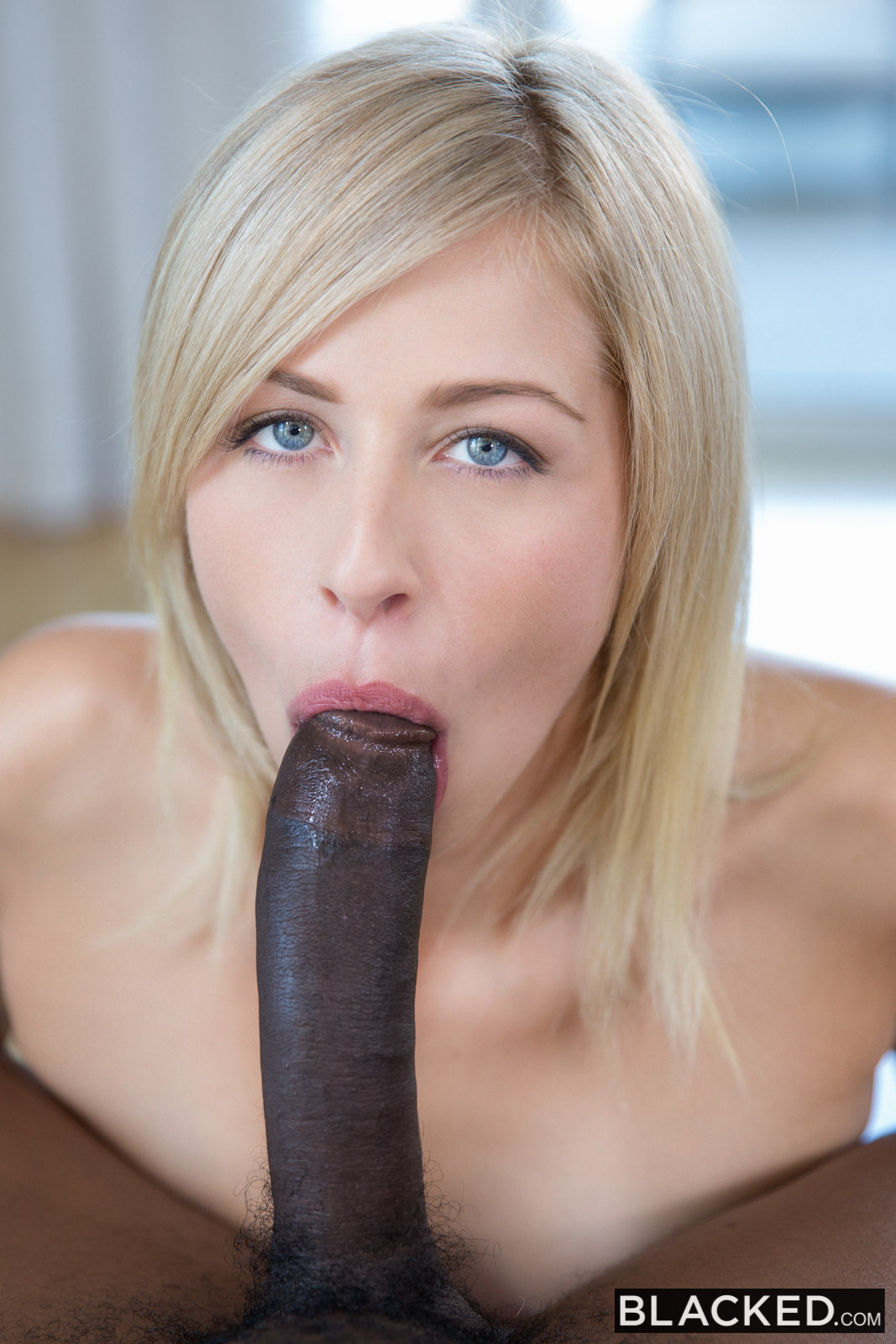 blond cock galleries